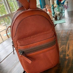 Frye leather backpack from Lena Zip collection